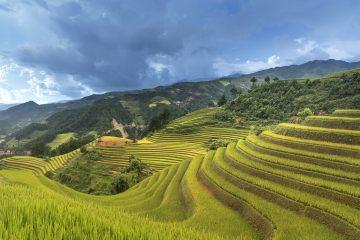 Sapa montañas de arroz vietnam